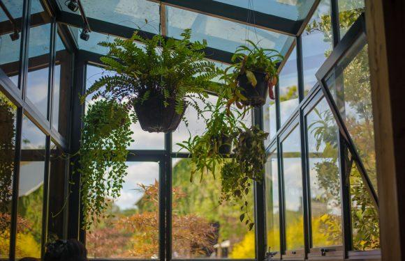 Schaffen Sie mehr Wohnraum mit einem Wintergarten